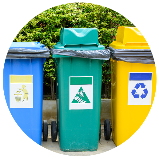 Set up a business recycling program