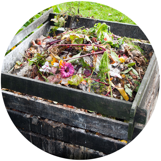 Opt for composting