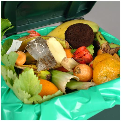 designate a composting area